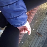 lira_sakura avatar
