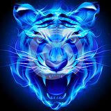 minhbao12 avatar