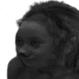 mossblack17 avatar