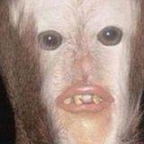 Jayce avatar