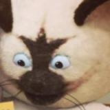 SpicyChickenNugget avatar